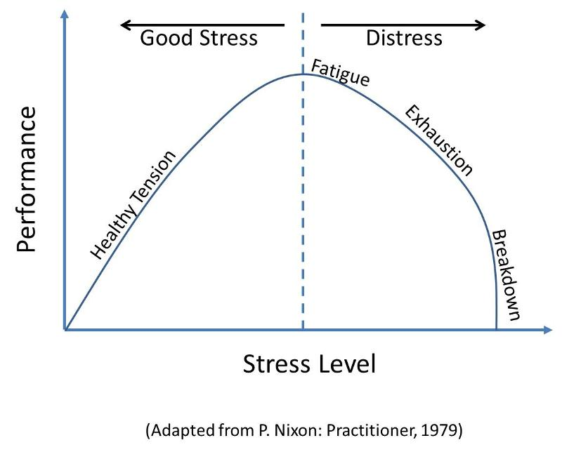 graphical representation of stress intensity versus time